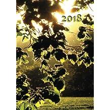 großer TageBuch Kalender 2018 - Blätter in der Abendsonne: DIN A4 - 1 Tag pro Seite