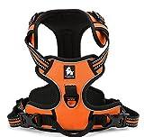 Best Front Range No-pull Dog Harnesses - Best Front Range No-Pull Dog Harness. 3M Reflective Review