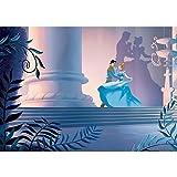 Vlies Fototapete PREMIUM PLUS Wand Foto Tapete Wand Bild Vliestapete - Disney Cinderella Kindertapete Prinz - no. 2654, Größe:312x219cm Vlies