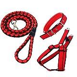 CRIVERS Einstellbar Kit-Rot Haustier Hundeleine Kragen Harness Set, Perfekt für Hunde, Wandern und Training (Haustier-Leine-Halsband-Harness Set)