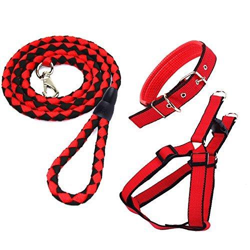 CRIVERS Einstellbar Kit-Rot Haustier Hundeleine Kragen Harness Set, Perfekt für Hunde, Wandern und Training (Haustier-Leine-Halsband-Harness Set) -