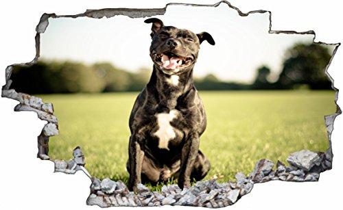 DesFoli Hund Dog Pitbull 3D Look Wandtattoo 70 x 115 cm Wanddurchbruch Wandbild Sticker Aufkleber C483