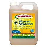 Action Pin Saniterpen Détergent Surpuissant 5 L