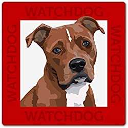 Warnschild American Pitbull, Pit Bull Terrier, Hundeschild, 22x22 cm