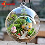 Aakriti Hanging Glass Plant Terrariums - Glass Orbs Air Plants Tea Light Candle