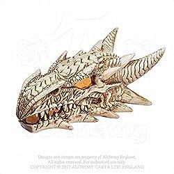 Calavera decorativa de resina LED dragon skull head V49 by Alchemy