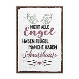 Holzschild mit Spruch – SCHNURRHAARE – im Vintage-Look mit Zitat als Geschenk und Dekoration zum Thema Katze und Engel von TypeStoff (19,5 x 28,2 cm)