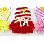 smalllee_lucky_store Pet Puppy Small Dog Cat Lace Skirt Princess Tutu Dress Striped Vest T-shirt Pleated Cat Puppy Cozy Dog Shirt Pet Dress smalllee_lucky_store Pet Puppy Small Dog Cat Lace Skirt Princess Tutu Dress Striped Vest T-shirt Pleated Cat Puppy Cozy Dog Shirt Pet Dress 51jAgHQA1qL