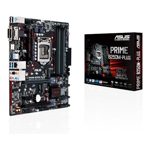 Asus Prime B250M-PLUS - Plaque base (6 x SATA III, HDMI, DVI, 5 x USB 3.0, Larga 1151, Intel Graphics HD, DDR4, uATX)