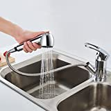 Auralum Küche Wasserhahn Einhandmischer küchenarmatur Spültischarmatur mit herausziehbarer Geschirrbrause