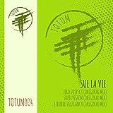 Supervision (Original Mix Totum004b)