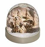 Advanta Erdmännchen Schneekugel Weihnachten Geschenk, mehrfarbig, 9,2x 9,2x 8cm