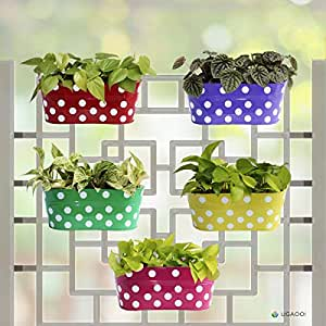 UGAOO Set of 5 - Dotted Oval Railing Planter - (Magenta, Purple, Green, Red, Yellow)