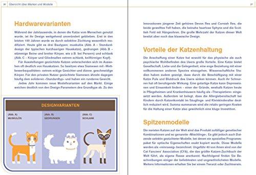 Katze - Betriebsanleitung: Intriebnahme, Wartung und Instandhaltung - 3