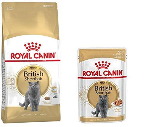 Royal Canin- 1x British Shorthair 400g 4X British Shorthair Frischebeutel 85 g