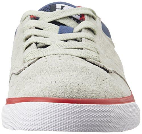 Scarpe DC Shoes: Nyjah Vulc SE GR/BL/RD Grey/White