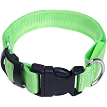 iEFiEL Collar Recargable Ajustable de Luz LED de Seguridad para Perro Gato con Cable USB de Nailon Luminoso