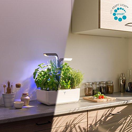 Potager Véritable® SMART Arctic White - Technologie ADAPT' LIGHT - Jardin autonome d'intérieur Made in France (Blanc/Gris argenté)