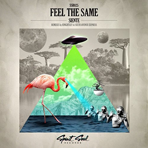 Feel The Same (Knightley Remix)