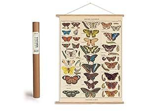 Vintage Poster Set mit Holzleisten (Rahmen) und Schnur zum Aufhängen, Motiv Schmetterlinge