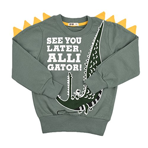 Tkria Little Boys Jumpers Kids Dinosaur Sweaters Sweatshirt Pullover Clothing Shirts Casual Tops Cotton Tee Age 2 3 4 5 6 7 8 9 10