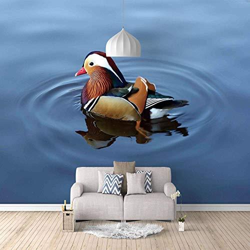 Fototapete Aufkleber Wasservögel Vlies Premium Kunstdruck Wandbild Dekoration Poster Bild Design Modern für Schlafzimmer Kinderzimmer 400x280cm -
