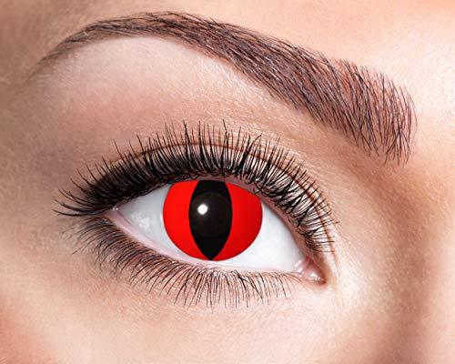 Zoelibat Farbige Kontaktlinsen für 12 Monate, Katze, 2 Stück, BC 8.6 mm / DIA 14.5 mm, Jahreslinsen in Markenqualität für Halloween, Fasching, Karneval, rot (Kontaktlinsen Halloween Amazon)