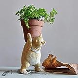 Statua Ornamento Scultura di Tutti i Giorni Collezione Mini Carino Fairy Garden Animal Vaso di Fiori Decorazione della casa Orso Pot for i Fiori di Coltura idroponica Planter Vasi