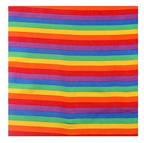 Deluxe Gay Pride Fancy Kleid Zubehör Rainbow Hüte Schmuck LGBT Parade Party Viel UK ()