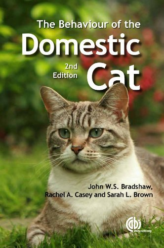 the-behaviour-of-the-domestic-cat