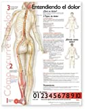 Understanding Pain Anatomical Chart in Spanish