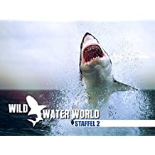Wild Water World, Staffel 2