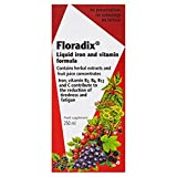 Floradix Liquid Iron and Vitamin Formula 250ml from Salus-haus