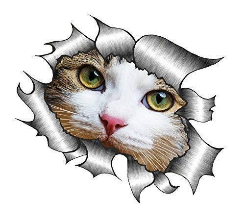 Sticar-it Ltd Zerrissen Metall Autoaufkleber Süß Katze Kätzchen mit Weiß Gesicht Peeping Haustier Vinyl Aufkleber - Mehrfarbig, Groß - 205mm x 160mm - Großen, Glatten Gesicht