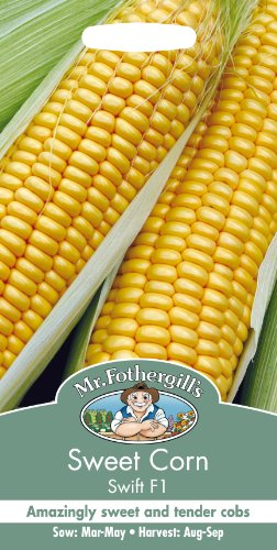 mr-fothergills-14451-sweet-corn-swift-f1-seeds