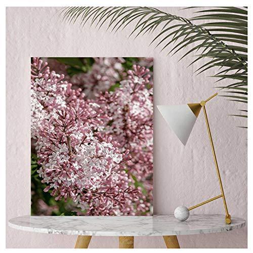 XIXISA Quadro Blush Pink lila Poster Flower Poster und Drucke Wall Pop Art Wandbilder für Wohnzimmer Blumen Dekor für Zuhause 50 * 70cm No Frame (Blush Pink Papier-blumen)