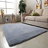 CAMAL Teppiche, Teppiche Rechteckig Samt Material Teppiche für Wohnzimmer Schlafzimmer und Badezimmer (Silber/Blau, 100 x 200 cm)