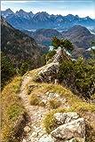 Posterlounge Holzbild 100 x 150 cm: Alpen und Wald an Einem Sommertag von Editors Choice