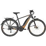 Bergamont E-Horizon 6.0 Herren Pedelec Elektro Trekking Fahrrad Grau/Orange 2018: Größe: 60cm (186-201cm)
