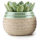 T4U 7.5CM Clay Glazed Stripe Oblate Sucuulent Plant Pot/Cactus Plant Pot Flower Pot/Container/Planter Beige