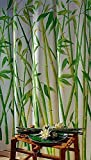 Duschvorhang Wannenvorhang Bambusmotiv Bamboo im Maß 180x180 cm