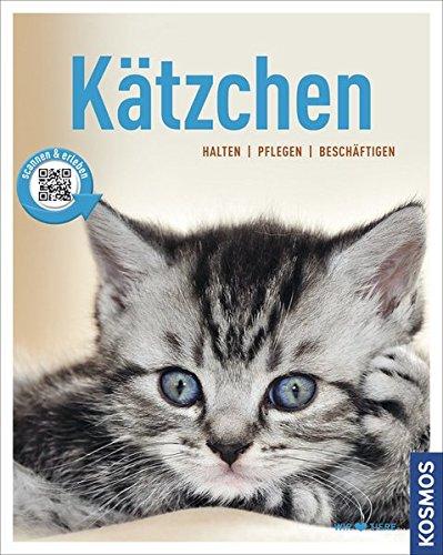 *Kätzchen: halten, pflegen, beschäftigen (Mein Tier)*