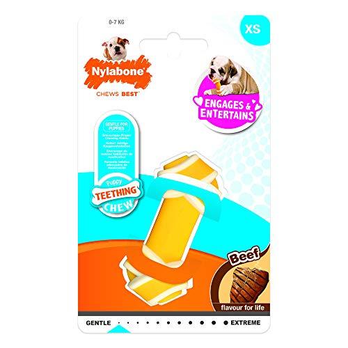 Nylabone 984723EU Knotenknochen-Kauspielzeug für Welpen, Rindfleisch-Geschmack - Kauspielzeug für zahnende Welpen - Große XS - für Hunde und Welpen bis 7 kg -