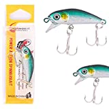 #2: Fishing Artificial Floating Fish, Hard Bait Lures,Crank Bait 1pcs