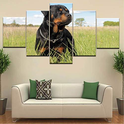 sshssh (Kein Rahmen) Rottweiler Hund Tier 5 Panel Hd Drucken Moderne Modulare Wand Poster Leinwand Kunst Malerei Für Hause Wohnzimmer Dekor -