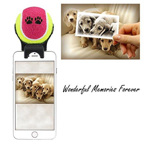 Bola para selfies con animales