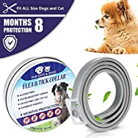 Hcpet Flea and Tick Collar for Dogs, Waterproof Dog Anti Flea Collar, 8 Months Effectiveness Protection with Natural Formula for Dogs and Cats, Natural & Safe