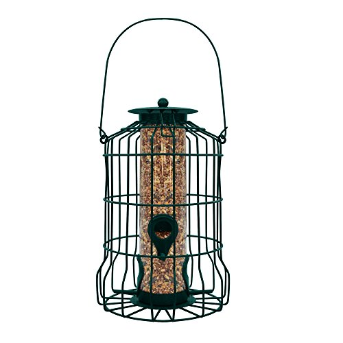 graybunny gb-6860 Käfigbetten Tube Feeder, Squirrel Proof Wild Bird Feeder (Großhandel Plus Supplies)