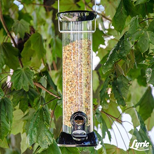Greenview Lyric Fine Tunes Wild Bird Food - BCI-396690