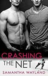 Crashing the Net (English Edition)